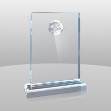 753 Golfer Award